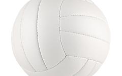 Next Up: Boys Volleyball Playoffs