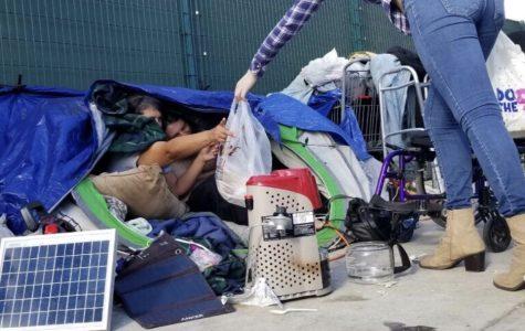 <b>A City of Tents</b>