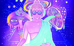 <b>The Psychedelic Renaissance</b>