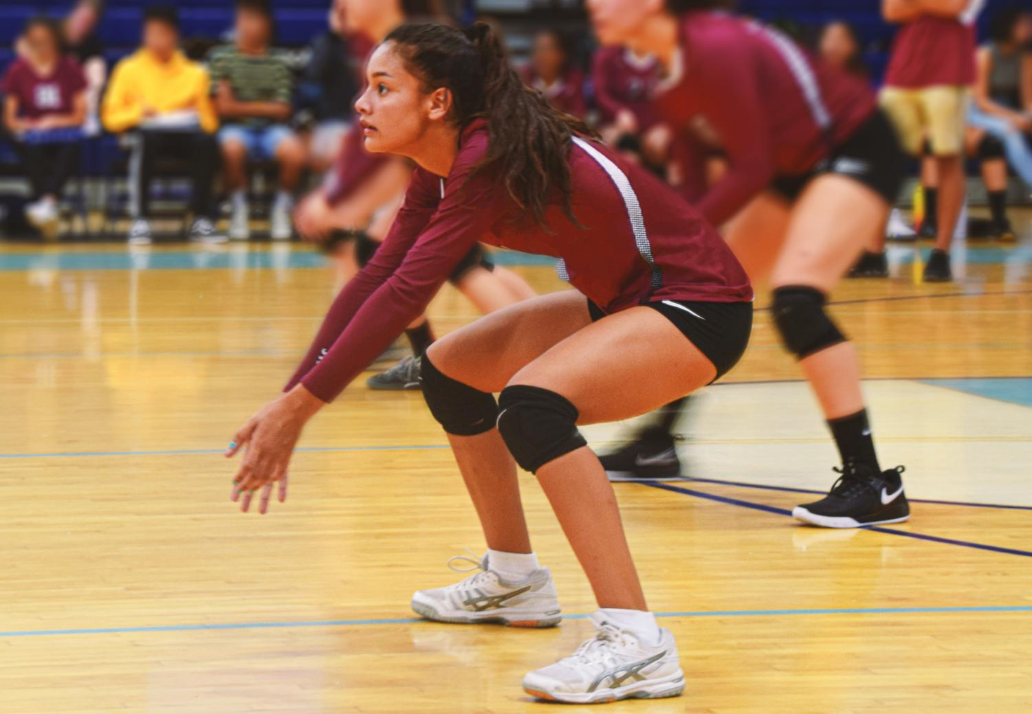 Girls Volleyball Team Triumphantly Brings Home A Winning Lead Record