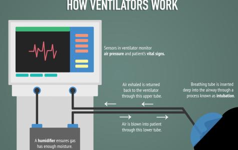 An infographic describing how ventilators work.