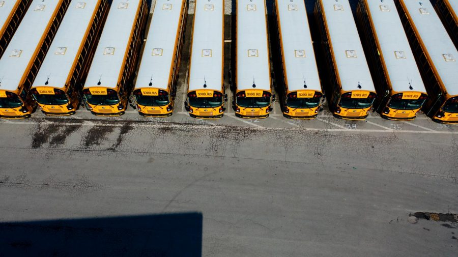 A line up of school bus in a parking lot.