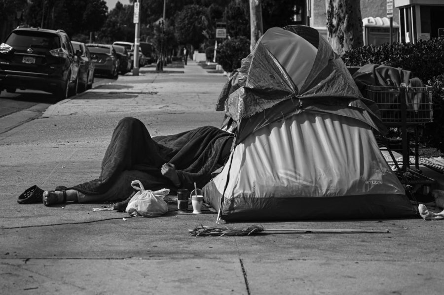 A tent is put up on a Van Nuys sidewalk. A person's head is resting inside the tent with the rest of their body on the sidewalk.