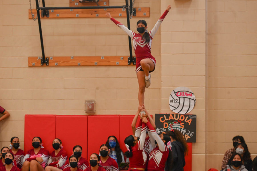 The cheer team came to the small gym to  encourage the volleyball squad during their final game at home.